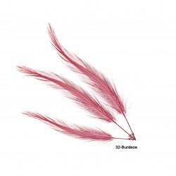 Pluma gallo quemada 11-15 cm.