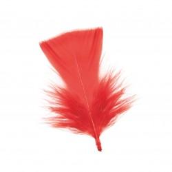 Pluma turkey corta 9-12 cm