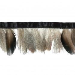 Fleco plumas gallina
