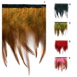 Galón plumas